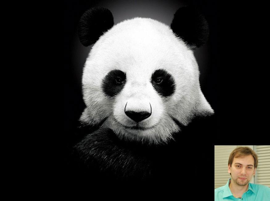 Panda 4-2